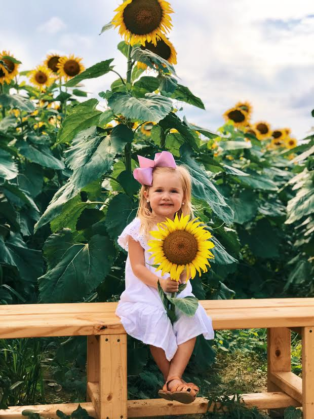 image-833600-Sunflower_little_girl-6512b.jpg
